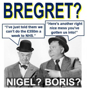Bregret-regreting-voting-for-Brexit